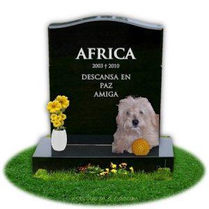 en recuerdo a Africa