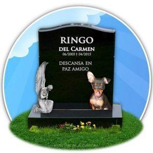 En memoria de Ringo del Carmen