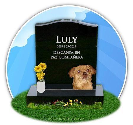recuerdo de perrita Luly