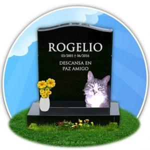 Cementerio online de mascotas- recuerdo de rogelio