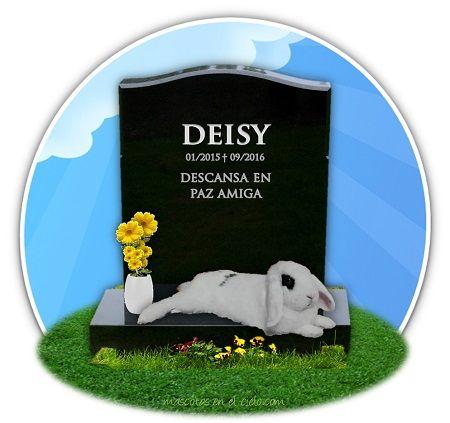 cementerio online de animales- en recuerdo de Deisy
