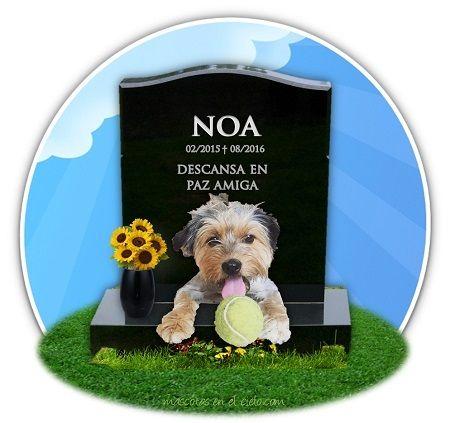 mascotas online cementerio- recuerdo de noa