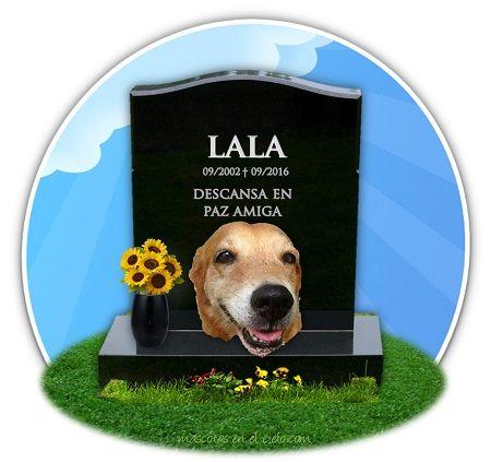 Lala en Cementerio Virtual de Mascotas