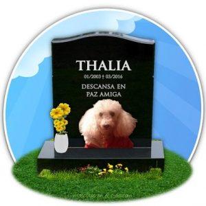 cementerio de mascotas virtual- recuerdo de Thalia