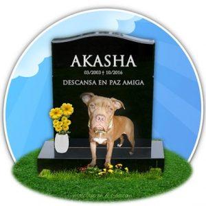 cementerio virtual de mascotas- en recuerdo de AKASHA