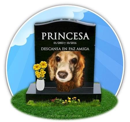 cementerio de mascotas online- en recuerdo de Azurday