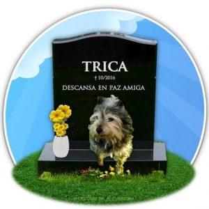 cmenterio mascotas virtual en recuerdo a trica