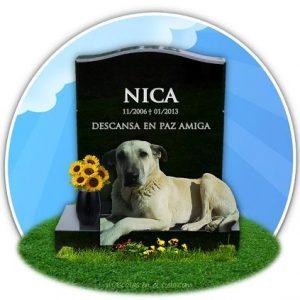 nica en cementerio mascotas online