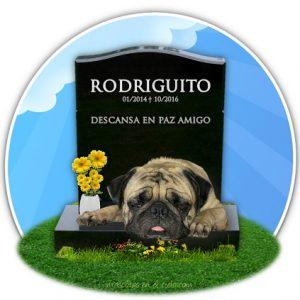 mascotas cementerio online en recuerdo de rodriguito