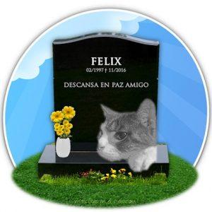 cementerio de mascotas virtual-en recuerdo de felix