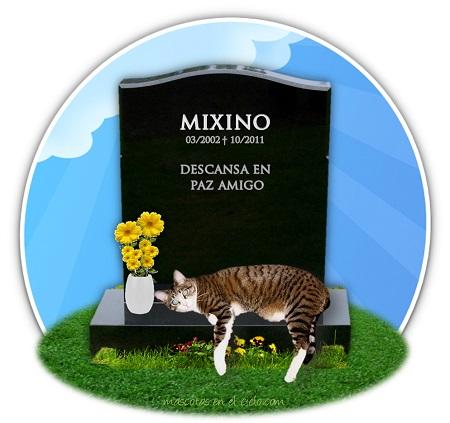 cementerio online de mascotas-en recuerdo de mixino