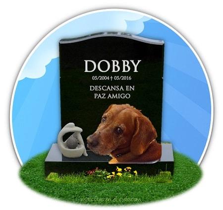 cementerio mascotas online-recuerdo de dobby