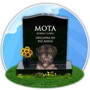cementerio online d emascotas- en recuerdo de mota