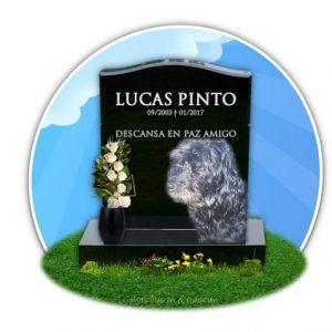 cementerio de mascostas online- recuerdo de lucas pinto