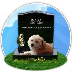 cementerio online de mascotas- recuerdo a bolo