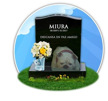 cementerio virtual de mascotas- recuerdo a miura