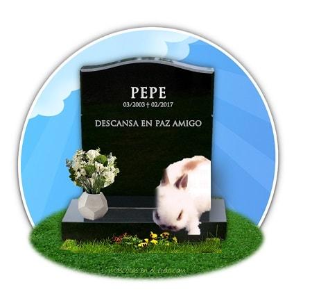 cementerio de mascostas online-recuerdo a pepe