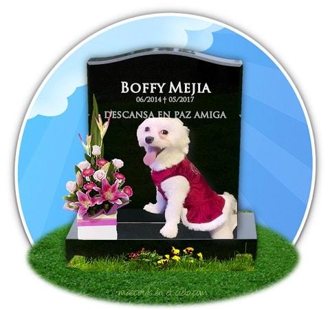 En recuerdo a Boffy Mejia